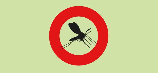 la enfermedad del mosquito