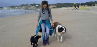 referente para tu perro