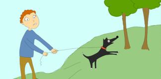 Perro tirando correa NOSINMIPERRO