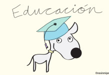 Educación canina Nosinmiperro
