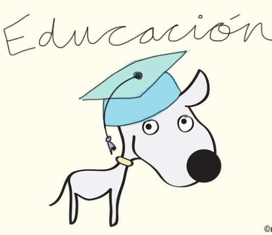 Educación canina Nosinmiperro