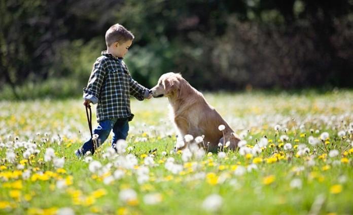 Smiley perro guia ciego