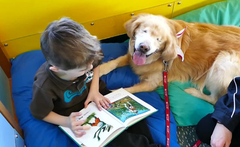 Smiley perro trabajando niño
